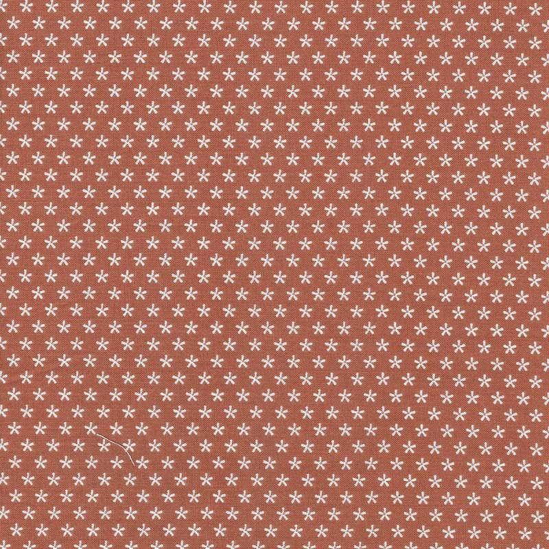 Bee Basics Cinnamon Floral | C6403-CINNA